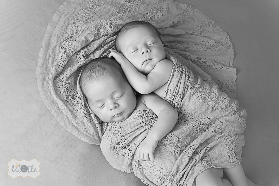 Twin Newborn Photographer St. Louis Mo